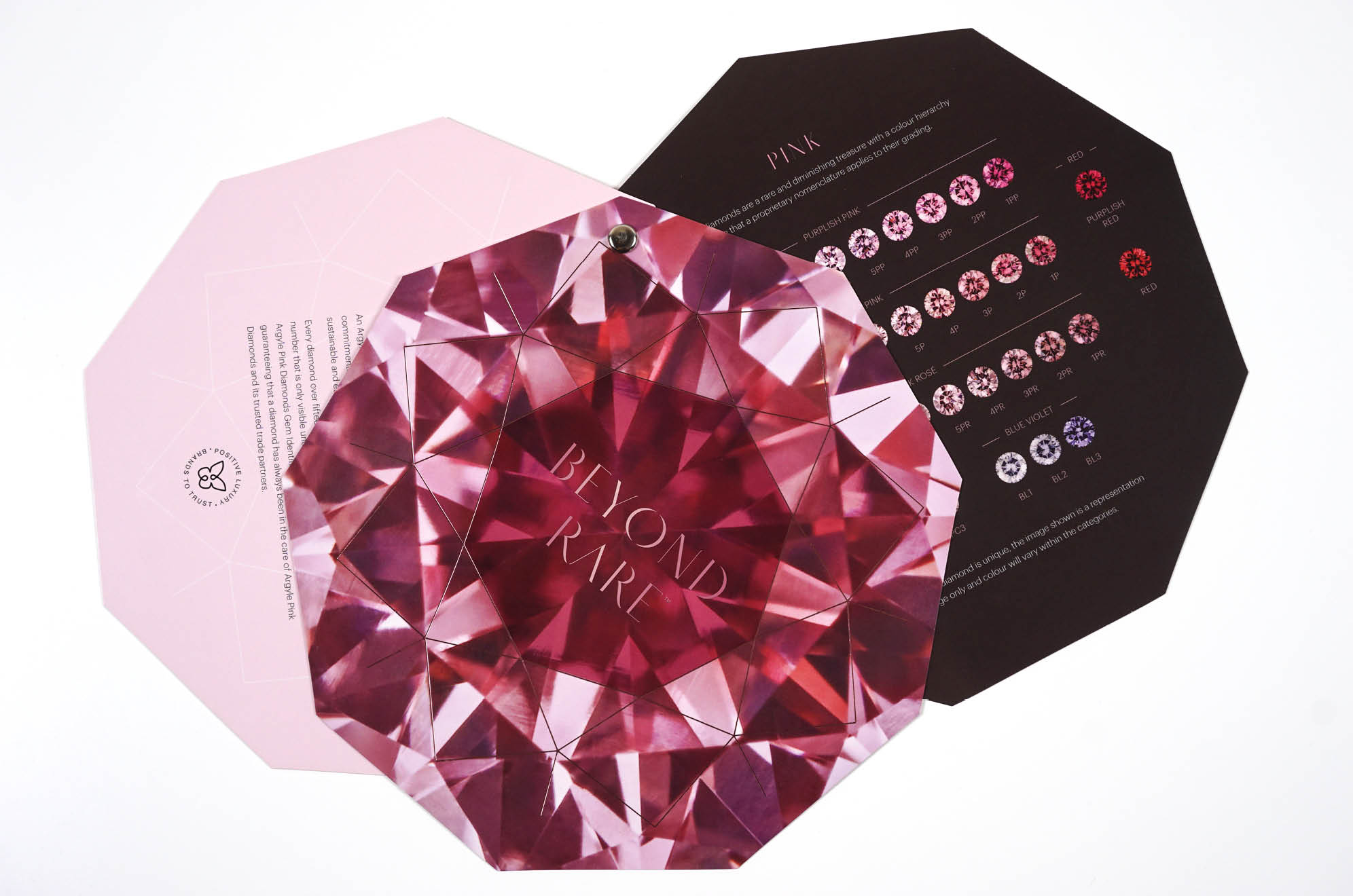 Beyond Rare Argyle Pink Diamond rivet brochure branding